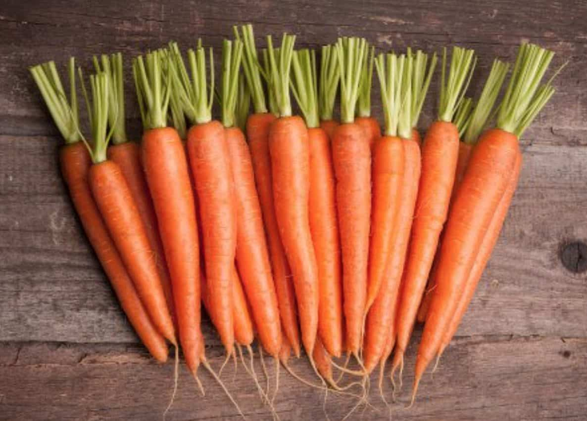 Carrots can provide your dog with a ton of health benefits, most notably better vision.